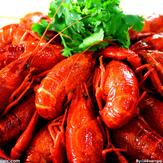 重庆小龙虾
